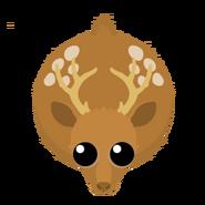 Mopeio Deer