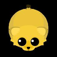 Mopeio Lion Cub