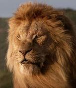Mufasa-the-lion-king-2019-69.6