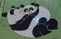 Batw 024 pandas