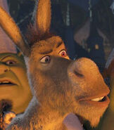 Donkey in Shrek Forever After