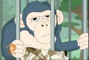 Kappa Mikey Chimpanzee