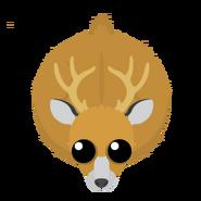 Mopeio Marsh Deer