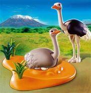 Ostrich playmobil