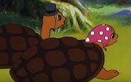 Simba the king lion turtles