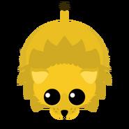 Mopeio Old Lion