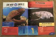 Predator Splashdown (25)