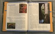 Scholastic Encyclopedia Of Animals (26)