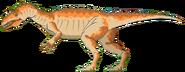 Allosaurus Math vs Dinosaurs