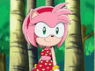 Amy-rose-at-the-beach-sonic-and-amy-3504783-640-480