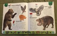 Deadly Creatures Dictionary (9)