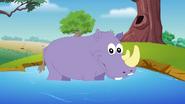 Appu Rhinoceros