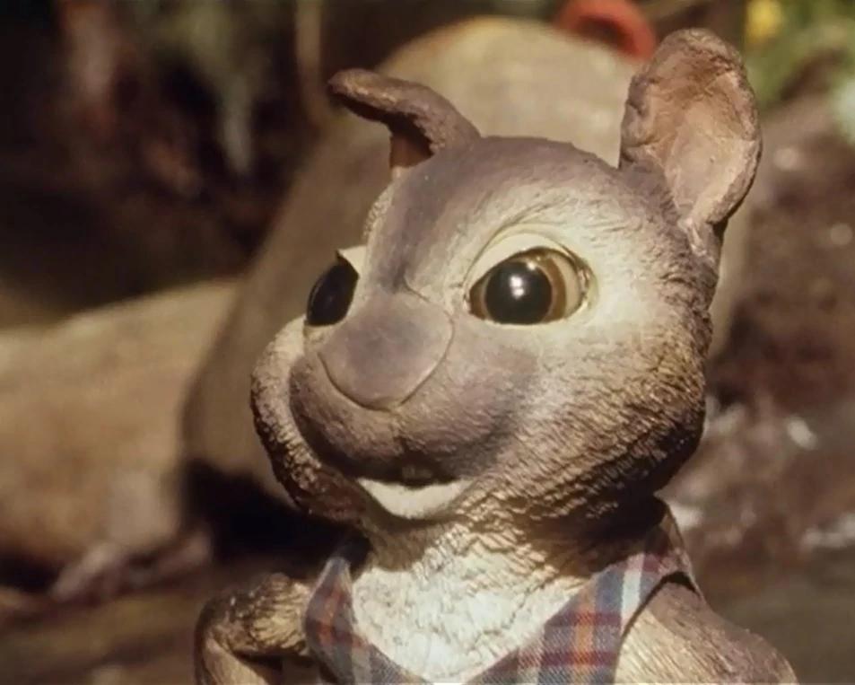Billy Rabbit
