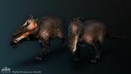 PachyrhinosaurusComposite