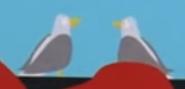 SPBLU Seagulls