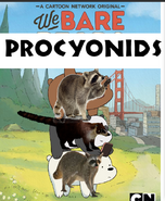 We Bare Procyonids Poster