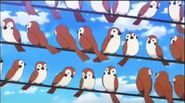 Yo-Kai-Watch Birds