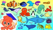 Anemenome Blue Tang Clownfish Dolphin Eel Flounder Goldfish Hermit Crab Isopod Jellyfish Krill Lobster Manatee Narwhal Octopus Penguin Queen Conch Ray Shark Turtle Urchin Viperfish Whale X-ray Fish Yellow Boxfish Zebra Shark
