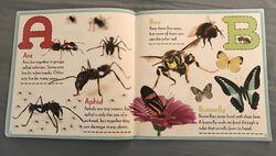 Bugs A-Z (1).jpeg