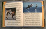 Scholastic Encyclopedia Of Animals (15)