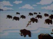 Dexter's Lab Mammoths
