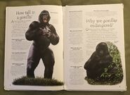 Endangered Animals (Over 100 Questions and Answers to Things You Want to Know) (1)