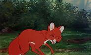 Fox-and-the-hound-disneyscreencaps.com-7339