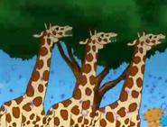 GDG Giraffes