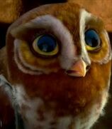 Gylfie in Legend of The Guardians- The Owls of Ga'hoole