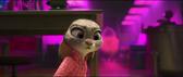 Judy Stunned