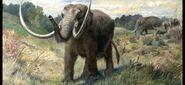 Mastodon, American