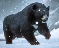 Planet Zoo Black Bear.png