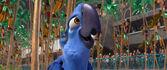 Rio-disneyscreencaps.com-9278