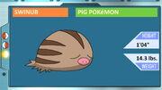 Topic of Swinub from John's Pokémon Lecture.jpg