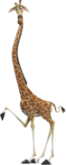 Melman the Reticulated Giraffe