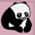 PPG Panda