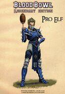 Pro Elf Artwork