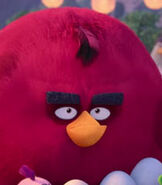 Terence in The Angry Birds Movie 2-0