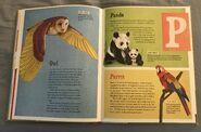 The Dictionary of Ordinary Extraordinary Animals (37)