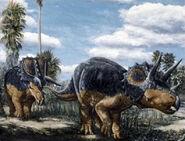 Triceratops-encyclopedia-3dda