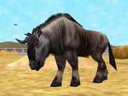 Zt2-wildebeest