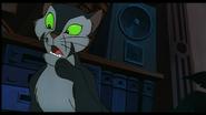 Confused cat felidae s cap by klarkkentthe3rd-d3055wm