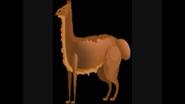 Safari Island Llama