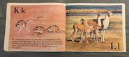 The Furry Animal Alphabet Book (7)