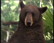 Jungle-book-movie-screencaps.com-3255