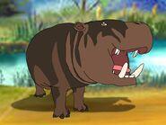 Rileys Adventures Pygmy Hippopotamus