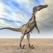 Velociraptor (V3)