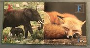 Animal ABC's (World Wildlife Fund) (3)