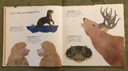 Can an Aardvark Bark? (2)