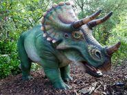 Dallas Zoo Triceratops